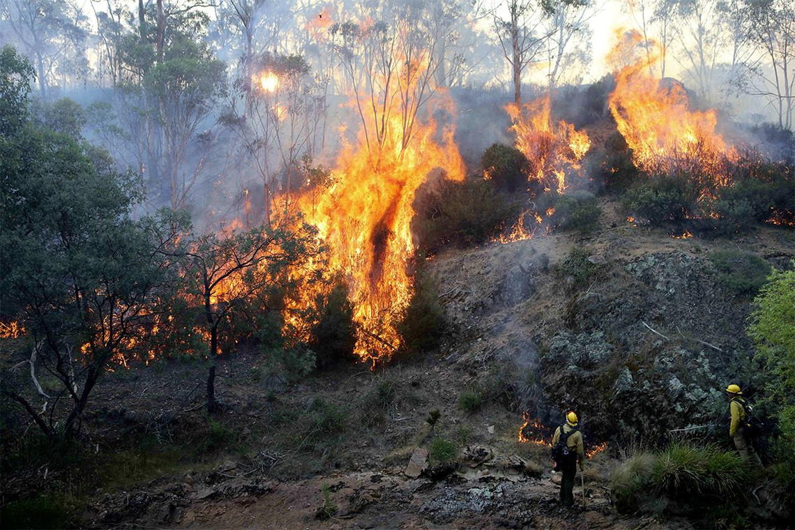 150000 AUD for victims of Australian bush fires